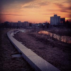 photo 5 (12)